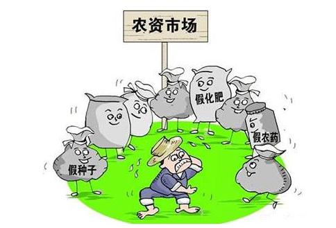 网上买农药遇假 建宁10户农民水稻受损近70亩