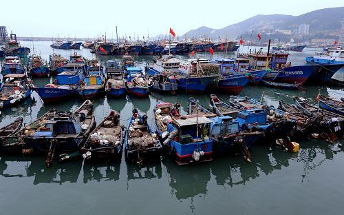 5月1日起新万博manbetx官网登录进入伏季休渔期 休渔政策没有太大变化